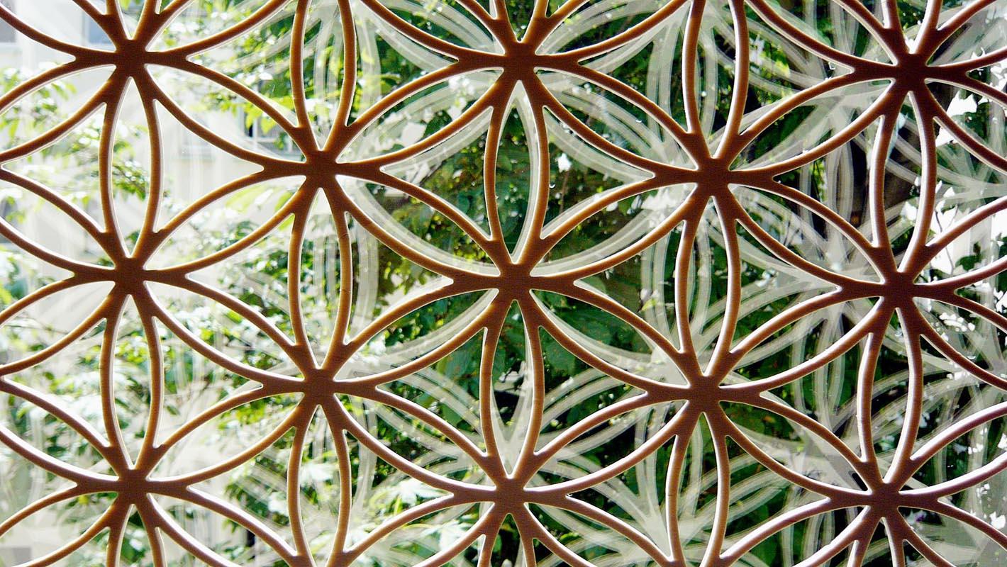 Blume des Lebens vor Baum