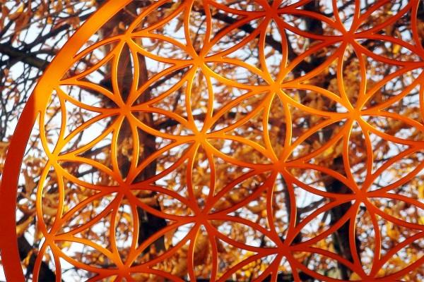 lebensblume acrylglas vor baum