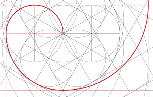 fibonacci-spirale-blume-des-lebens-wachstum