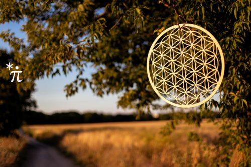 Blume-des-Lebens-aus-Holz-Birke-Sonnenuntergang